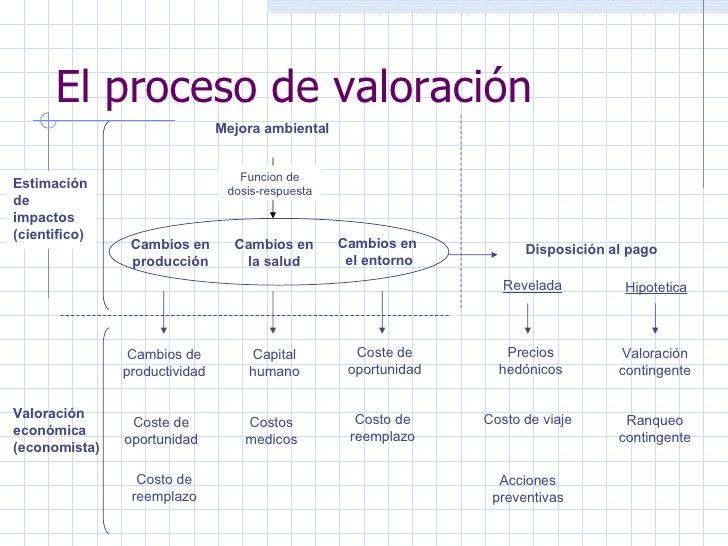 ejemplos-valoracion-economica-2-3-728