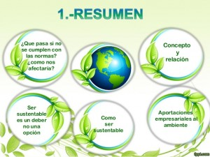 empresas-y-medio-ambiente-2-638